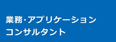 業務・アプリケーションコンサルタント